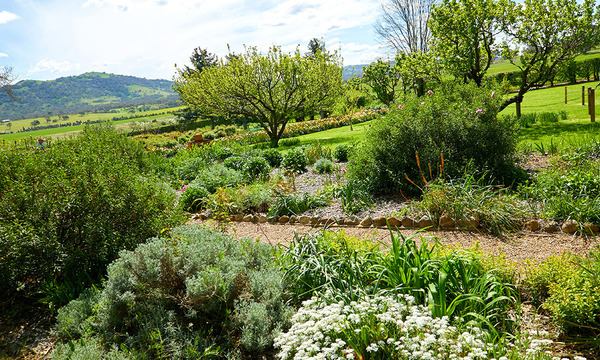 Harvest Day Out: Tour: Lanyon Garden History Walk
