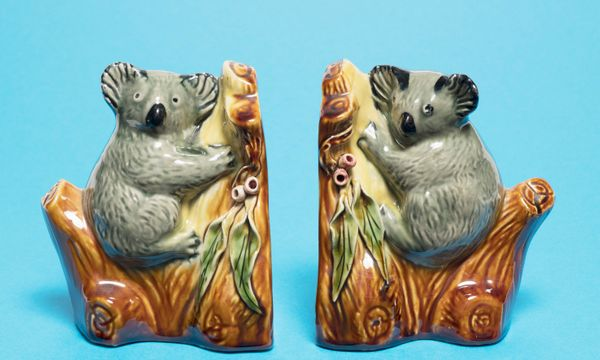 Collector Talk: Julie and Andrew Carter's Australiana ceramics